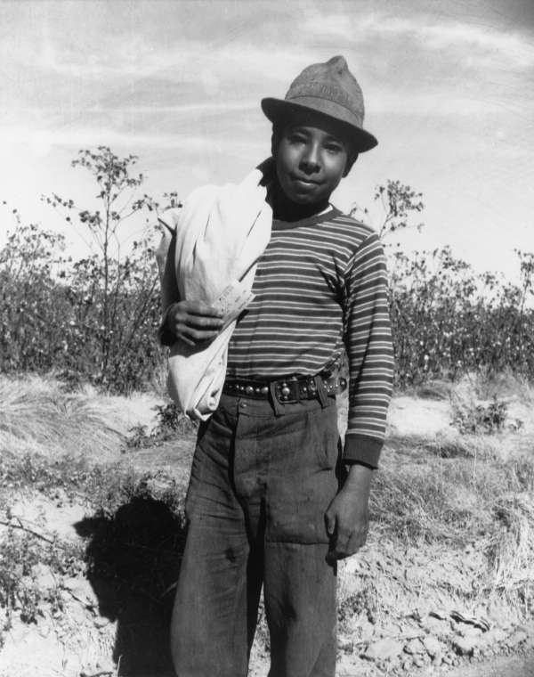 Pinal County, Arizona. Mexican Boy Age 13, Coming in From Cotton Fields at Noon.