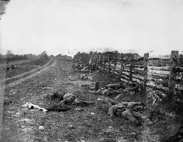 Antietam, Confederate Dead By a Fence On the Hagerstown Road