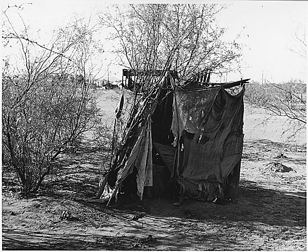Cotton Camp Outhouse