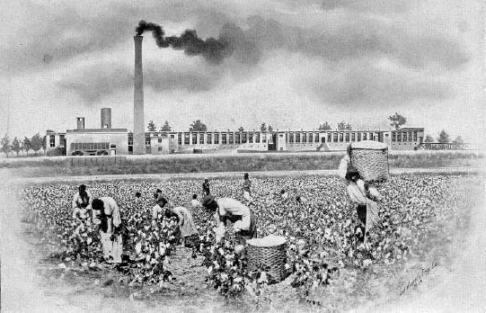Cotton Pickers in Front of the Atherton Cotton Mill, Just Outside Dilworth South Caroline