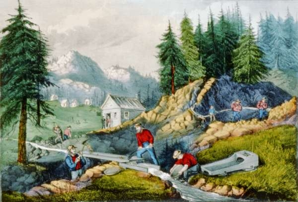Gold Mining in California