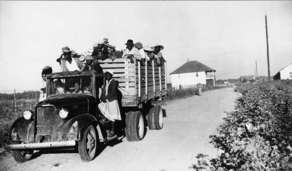 Negroes Brought In By Truck From Nearby Towns as Day Labor for Cotton Picking. Marcella Plantation, Mileston, Mississippi Delta, Mississippi