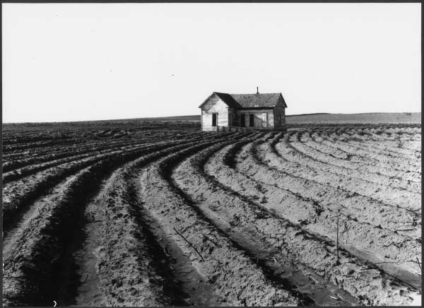 Power Farming Displaces Tenants.  Childress County, Texas Panhandle