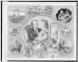 Testimony in the Great Beecher-Tilton Scandal Case Illustrated